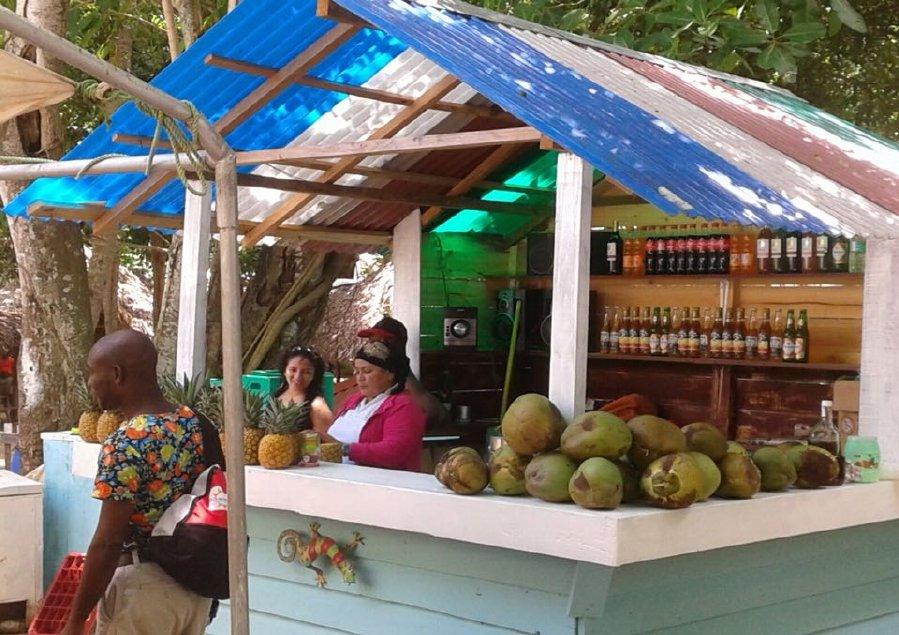 iway sys excursion a samana desde punta cana cayo levantado isla bacardi island cascada limón waterfall