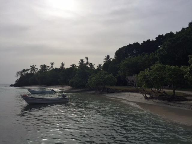 iway sys excursion a samana desde punta cana cayo levantado isla bacardi island