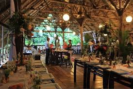 ecolodges republica domincana samana iway sys hotel ecologico especial treehouse