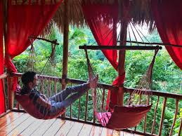 hotel ecologico iway sys excursiones trehouses en samana